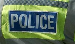 Man bitten on face by Staffordshire Bull Terrier after being attacked by three dogs on Newmarket Heath | Newmarket Weekly News | Newmarket Jobs, Sports & Newmarket Property | Cambridge News