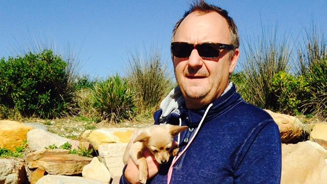 Off-lead attack kills pup in Pittwater | dailytelegraph.com.au